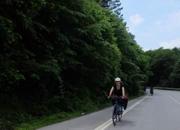 Carraro Bisiklet