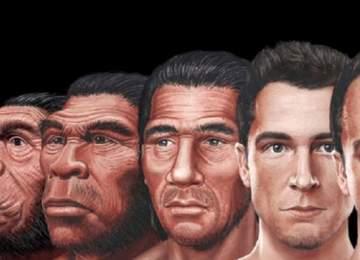 homo türleri
