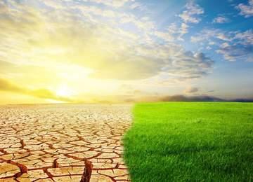 Kurak Çök Arazi ve Yeşil Doğa