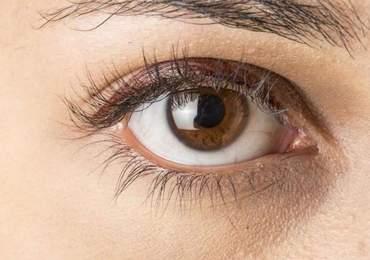 Göz renkleri