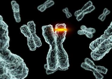 Kromozom Mutasyon