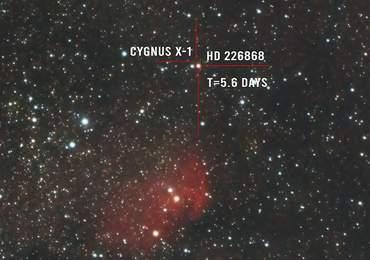 Tulip Nebula, HD 226868 ve Cygnus X-1