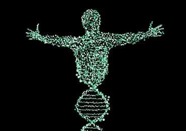 İnsan ve DNA