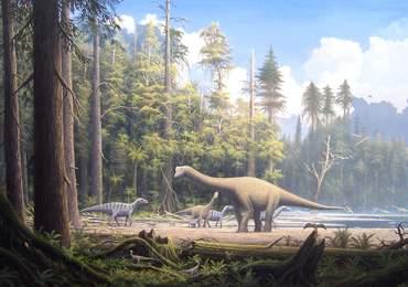 Jurassic Çağ