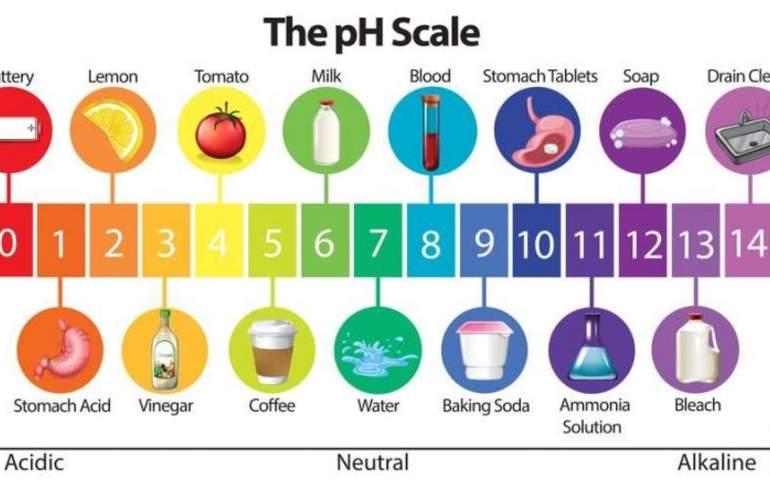Ph skalası